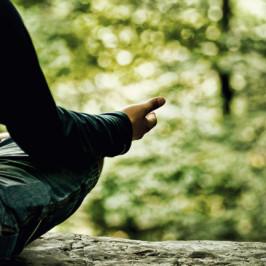 Elämä tasapainoon